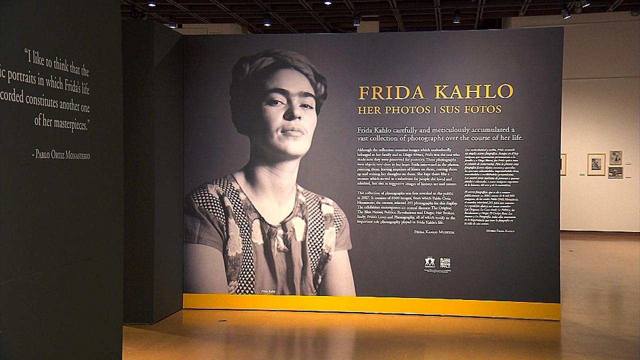 ¡COLORES! - Frida Kahlo