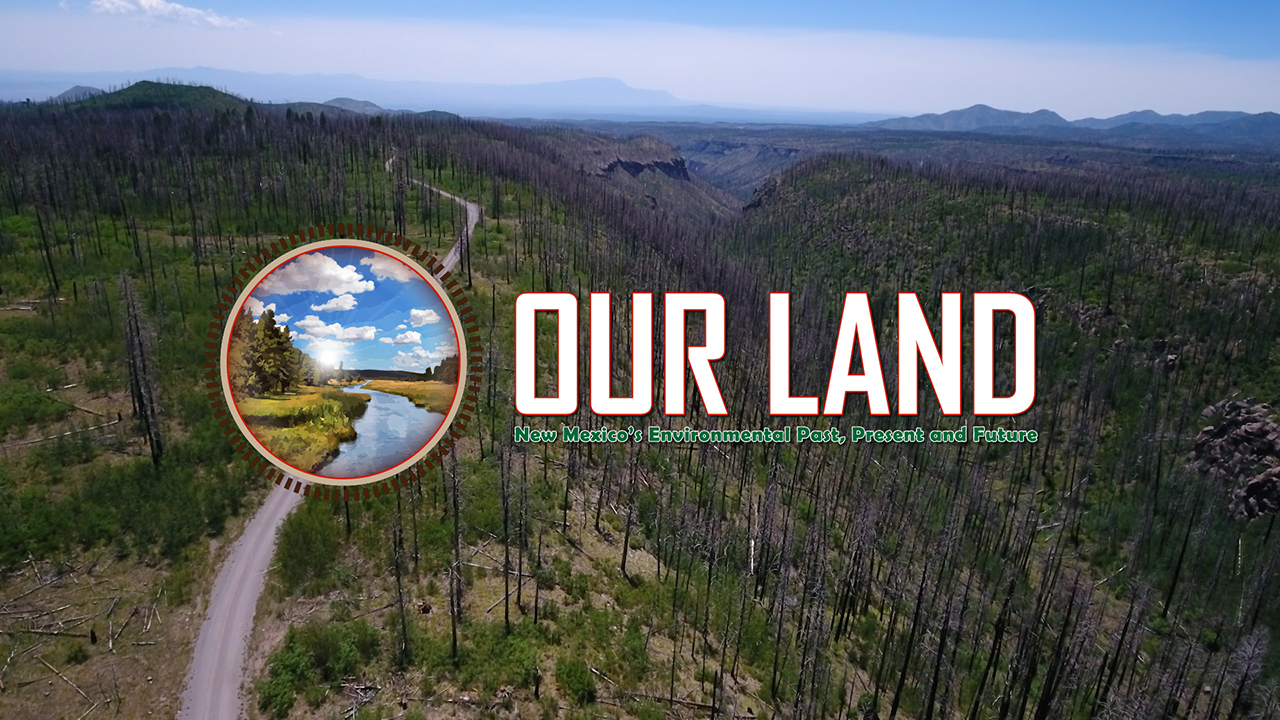NMiF: Our Land