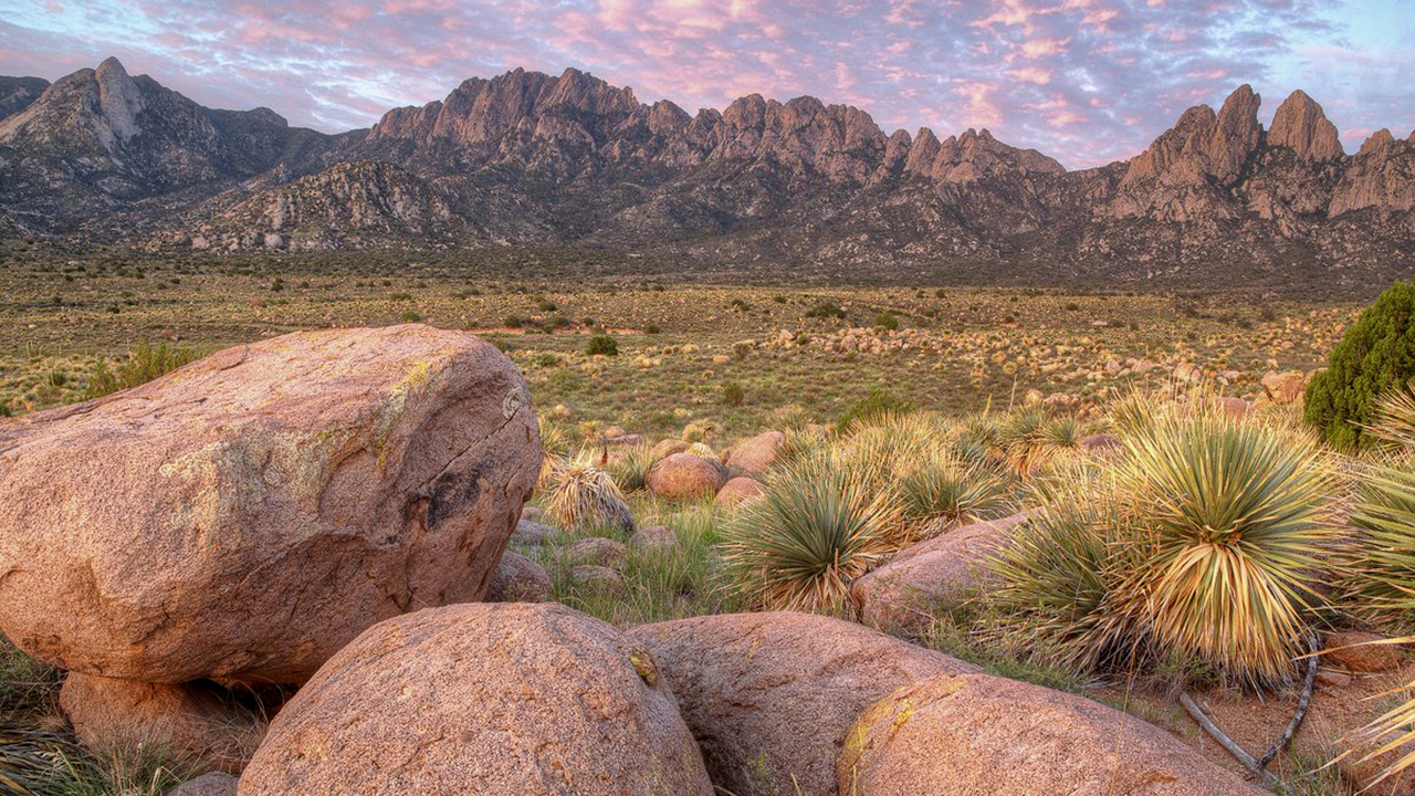 NMiF: The Line Panel - national monuments
