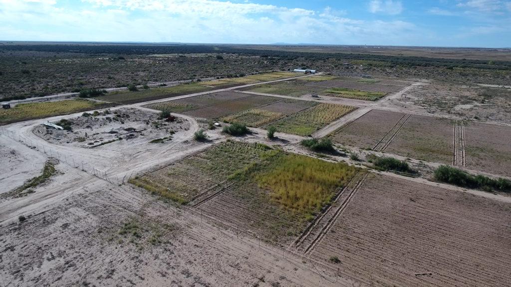 NMiF: farm