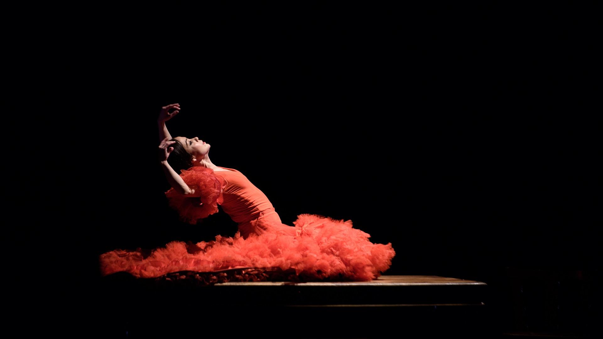 1250 Flamenco