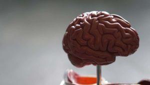 Alzheimer's vaccine