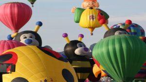 Balloon Fiesta Security 3