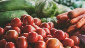 1422 Decolonizing Diets 3