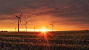 View of grassy plains at sunset, with wind turbines in the distance.