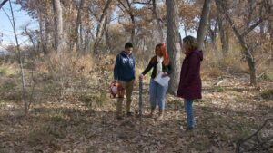 Three people stand in a woodsy area, observing a pole in the ground.