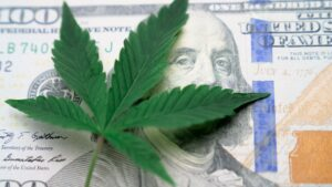 A cannabis leaf rests on top of a $100 dollar bill.