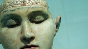 Bust of a human head with cranium detached, revealing the brain and scientific labels.