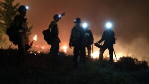 A group of firefighters with headlamps coordinate with each other next to a forest fire.