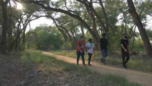 4 people walk along a path in a forested area