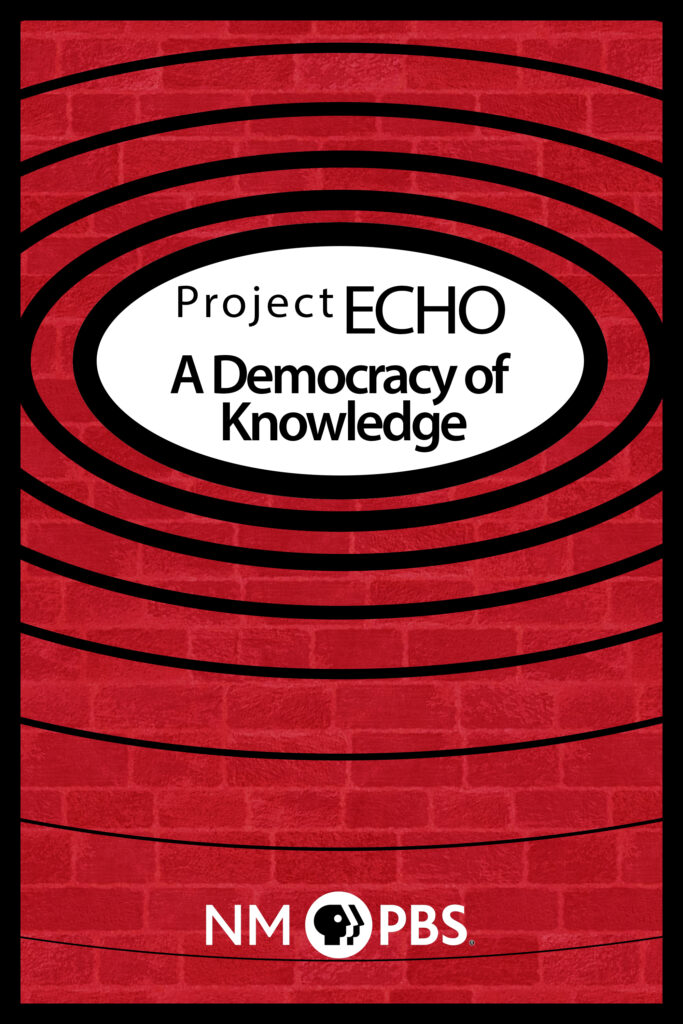 Project Echo Cover