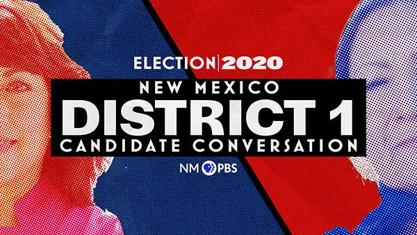District 1 Candidate Conversation