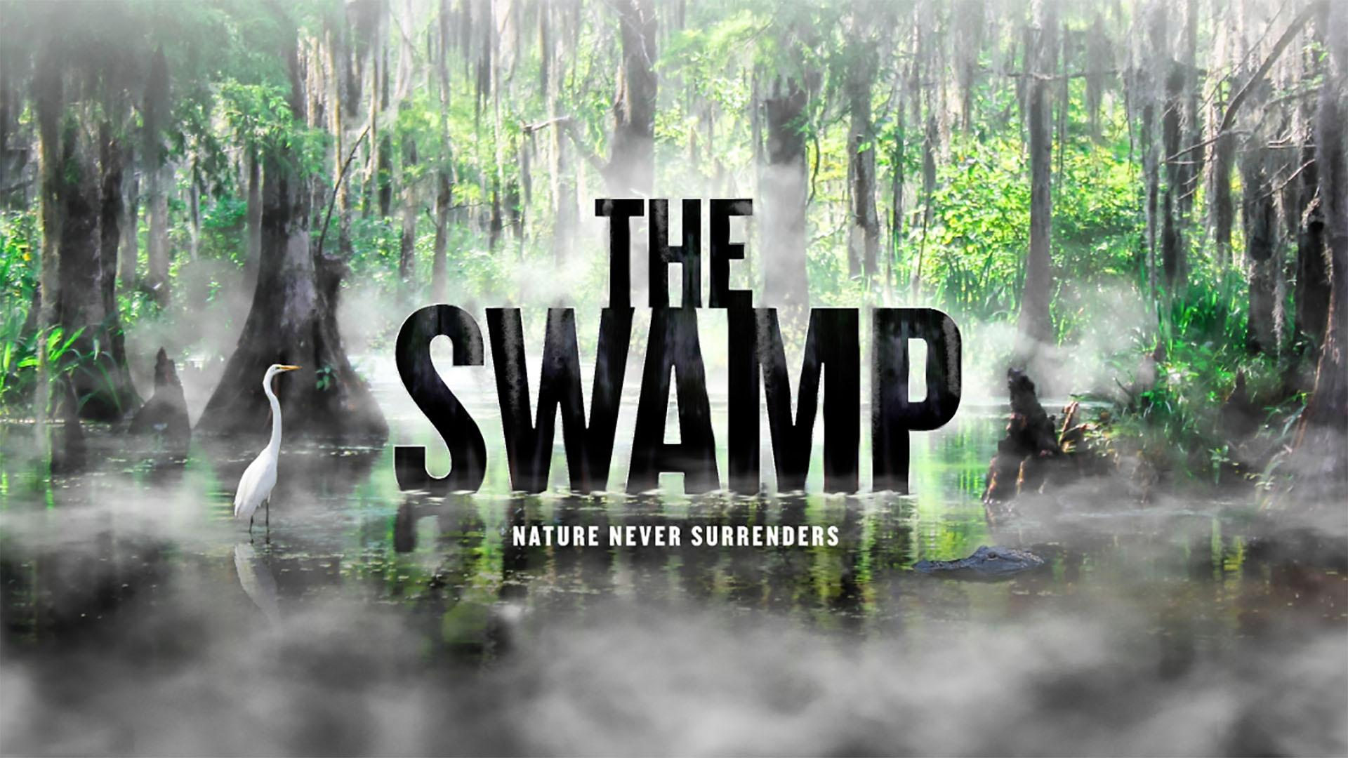 american experience the swamp